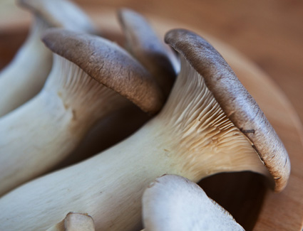 How to cook King Trumpet Mushrooms